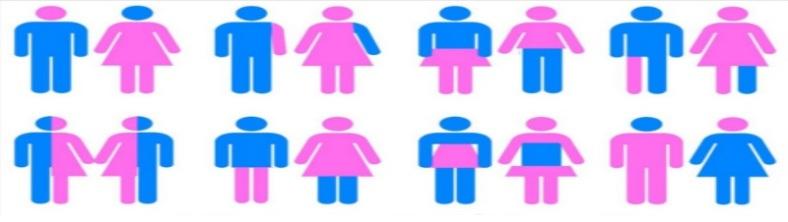 transgender-1381282.jpg